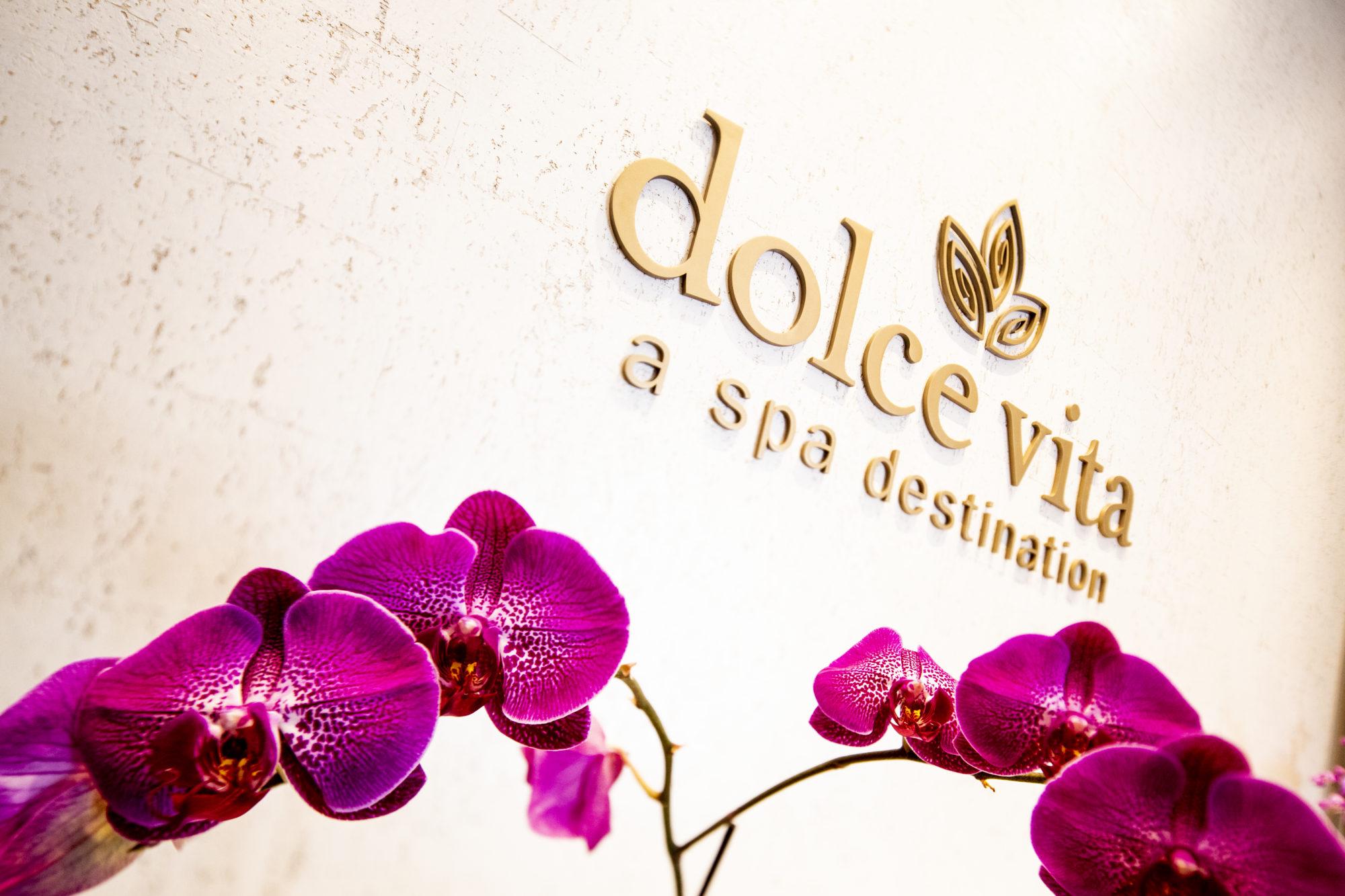 Dolce Vita Logo